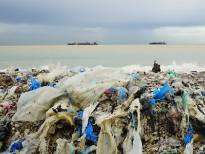 Plastic Bags on Beaches